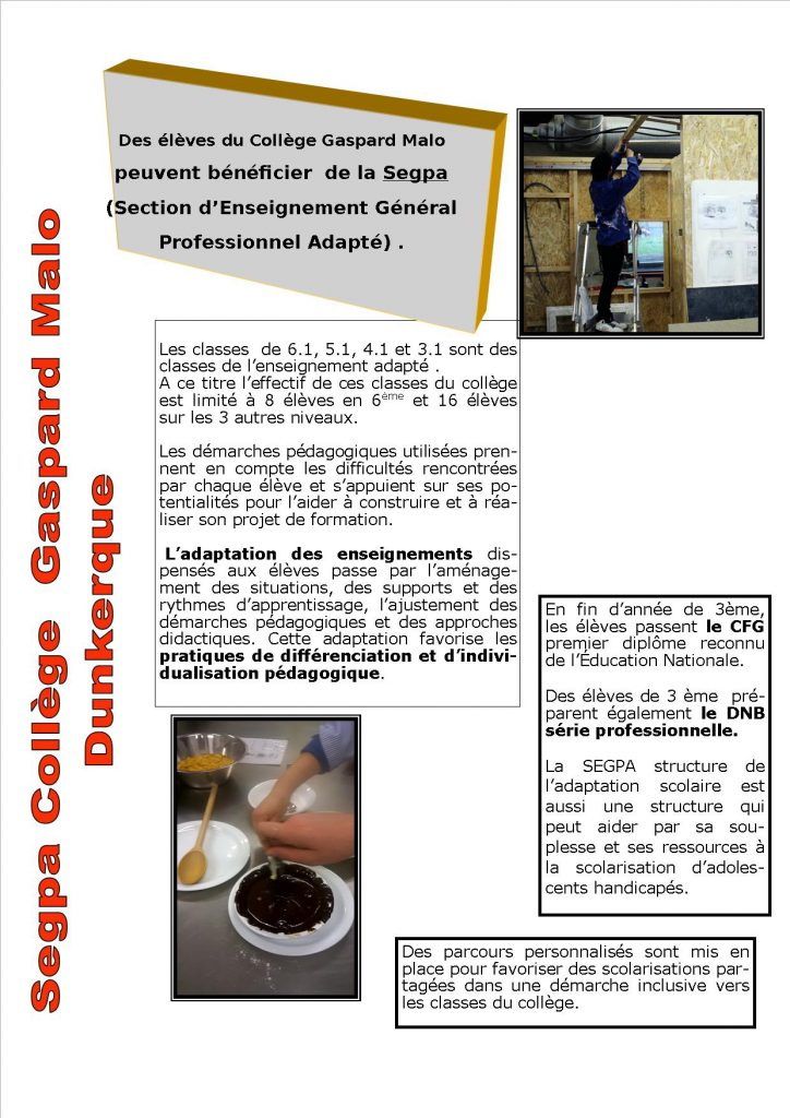 presentation-segpa-page-1-2016